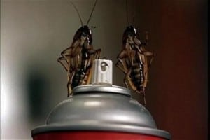 roaches1